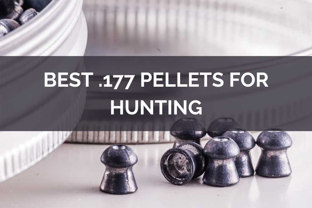 best .177 pellets for hunting