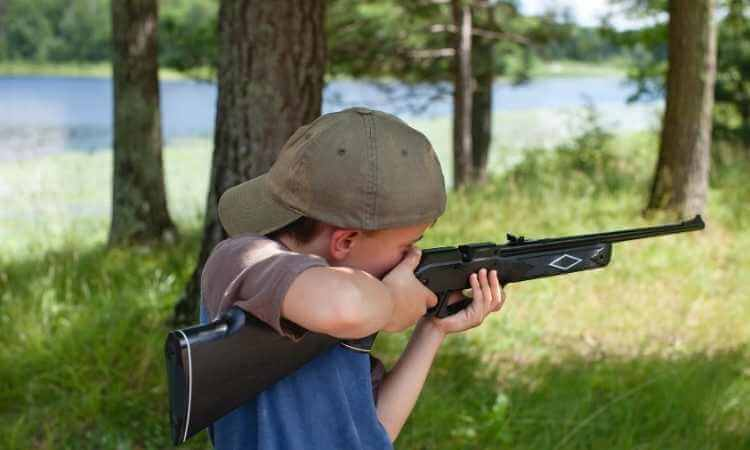 Which Gun Is More Suitable For Beginners, Bb Or Pellet Gun